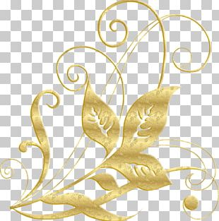 Ornament Graphic Design Decorative Arts Pattern PNG