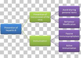 Criminal Law Sources Of Law Algemene Rechtsbeginselen Hepatitis PNG