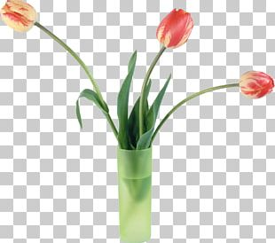 Tulip Flower Bouquet Vase PNG
