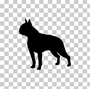Boston Terrier Border Collie Golden Retriever Chinese Crested Dog Bedlington Terrier PNG