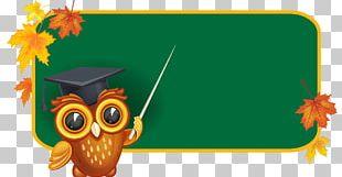 School Board Of Education Blackboard PNG