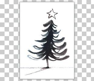 Fir Christmas Ornament Spruce Christmas Tree Pine PNG