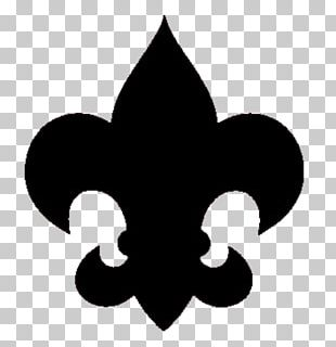 New Birth Of Freedom Council Boy Scouts Of America Scouting Cradle Of Liberty Council Central Florida Council PNG