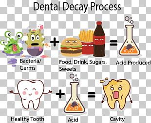 Tooth Decay Human Tooth Dentistry Tooth Enamel PNG