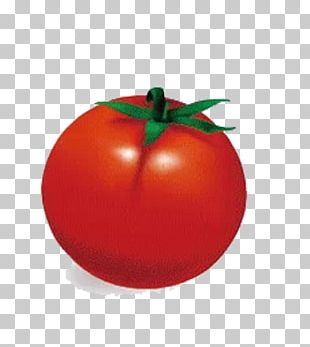 Plum Tomato Sweet And Sour Bush Tomato Apple PNG