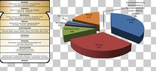 Southern Federal University Encuesta De Satisfacción Wii Project PNG