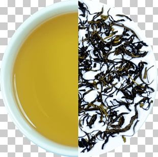 Hōjicha Nilgiri Tea Darjeeling Tea Assam Tea White Tea PNG