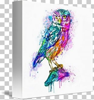Owl Watercolor Painting Canvas Print Art PNG
