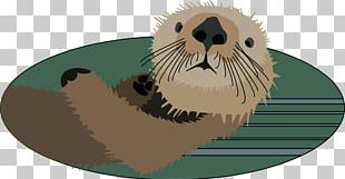 Sea Otter North American River Otter PNG