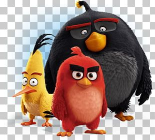 Angry Birds Movie Group PNG