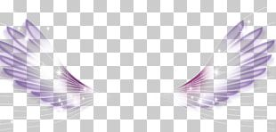 Wing White Feather PNG