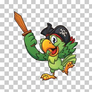 Piracy Pirate Parrot PNG