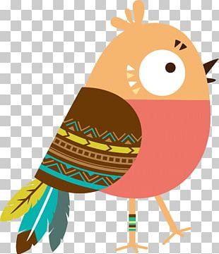 Owl Bird Carpet Cartoon Illustration PNG