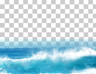 Sea Google S Computer File PNG