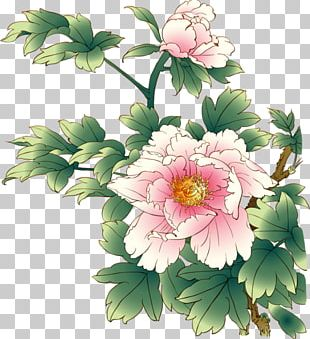 Chinese Painting Peony PNG