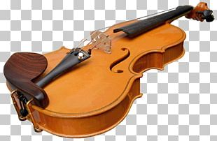 Violin Musical Instruments Cello Viola Chordophone PNG