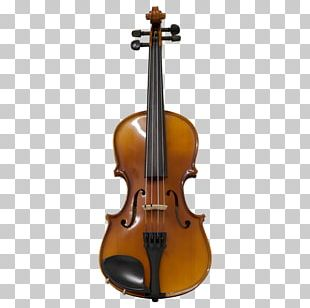 Cello Violin Viola String Instruments Musical Instruments PNG