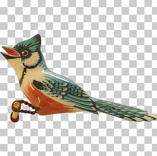 Bird Feather Beak Animal Tail PNG