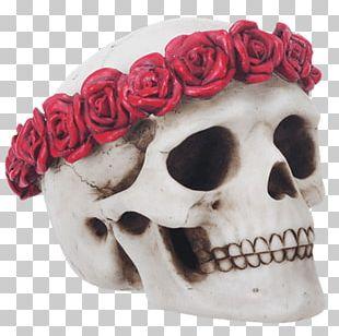 Skull Calavera Flower Wreath Crown PNG