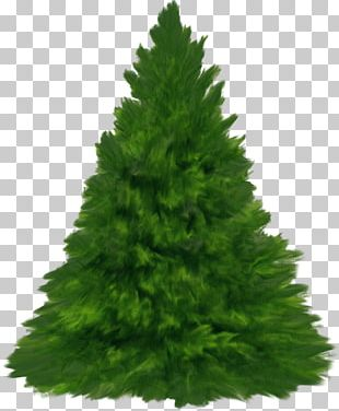 New Year Tree Christmas Day Yandex Russia PNG