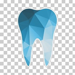Human Tooth Dentistry Jaw PNG