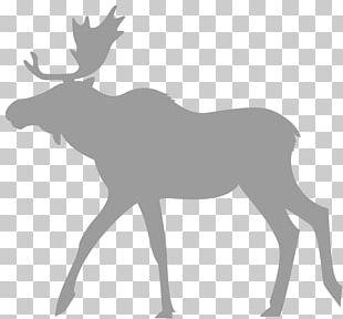 Moose Reindeer Eftersökshund Hunting Dog PNG