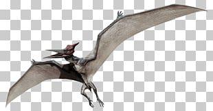 Velociraptor Pteranodon Pachycephalosaurus Jurassic World Evolution Dimorphodon PNG