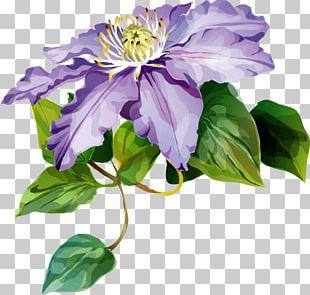 Leather Flower Cut Flowers Purple Petal PNG
