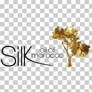 Moroccan Cuisine Morocco Argan Oil Skin Care Business PNG