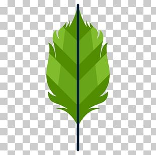 Leaf Computer Icons Project PNG
