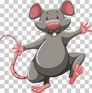 Laboratory Rat Mouse PNG