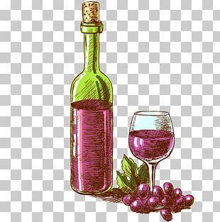 Sparkling Wine Champagne Bottle Illustration PNG