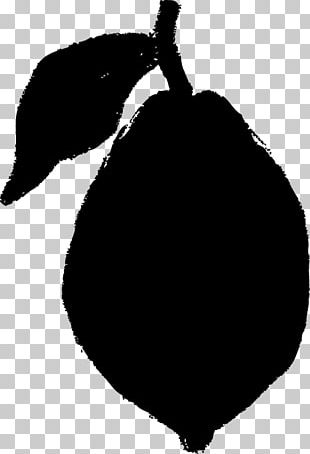 Black And White Lemon PNG