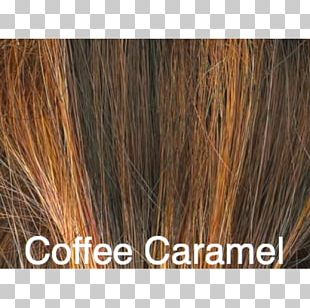 Brown Hair Long Hair Caramel Color Hair Coloring PNG