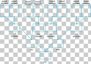 Family Tree Genealogy Great-grandparent Father PNG