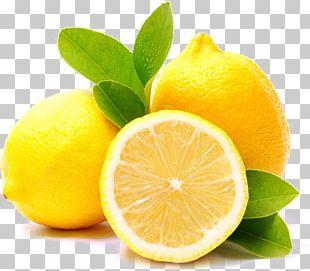 Lemon Meringue Pie Lemon Tart Flavor Herb PNG