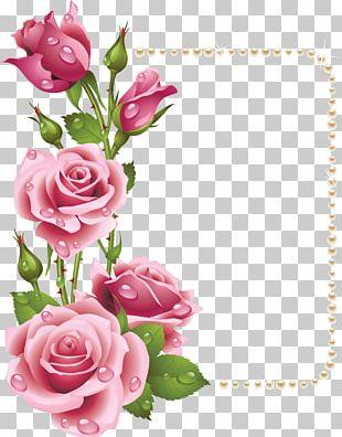 Rose Frame Pink PNG
