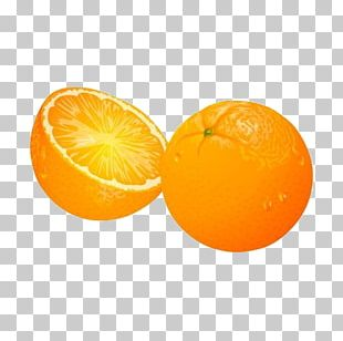 Orange Juice Mandarin Orange Blood Orange PNG