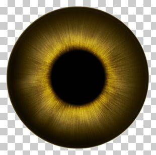 Human Eye Iris Texture Eye Color PNG