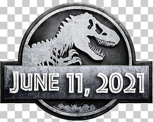 Universal S Jurassic Park Film Director Amblin Entertainment PNG