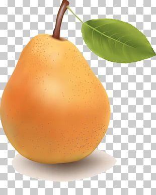Pear Tangerine Fruit Tangelo PNG
