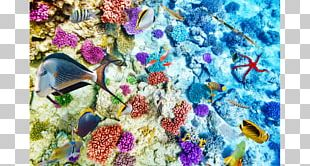 Coral Reef Life Coral Reef Fish Ocean PNG