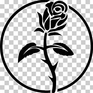 Anarchism Black Rose Symbol Anarchy Anarchist Black Cross Federation PNG