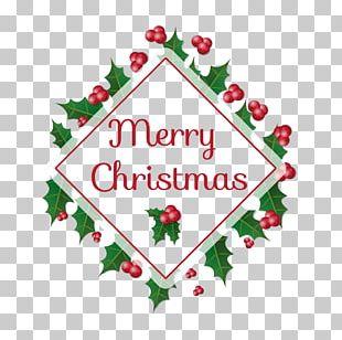Christmas Tree Christmas Card Greeting Card Gift PNG