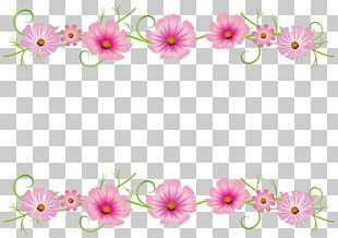 Floral Design Illustration Flower Cosmos Autumn PNG