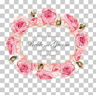 Wedding Invitation Rose PNG