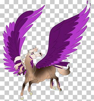 Bird Of Prey Illustration Legendary Creature Beak PNG