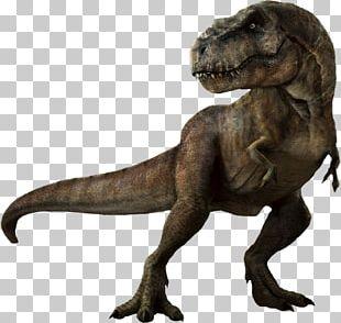 Tyrannosaurus Jurassic Park: The Game Velociraptor PNG