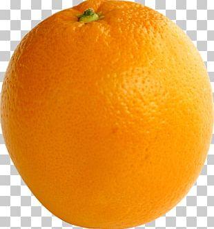 Orange Juice Tangerine Tangelo Blood Orange PNG