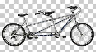 Tandem Bicycle Bike Rental Cycling Electric Bicycle PNG